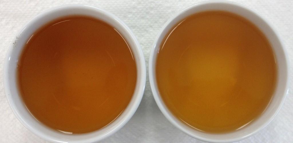 First Flush (Left), Autumn Flush (Right)
