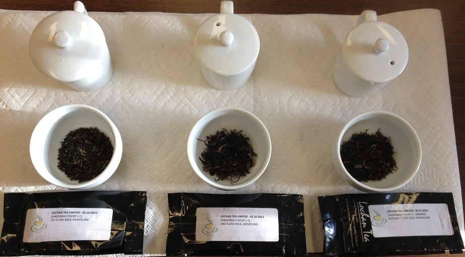 Jungpana Estate Side-by-Side-by-Side Flush Comparison Dry Leaves