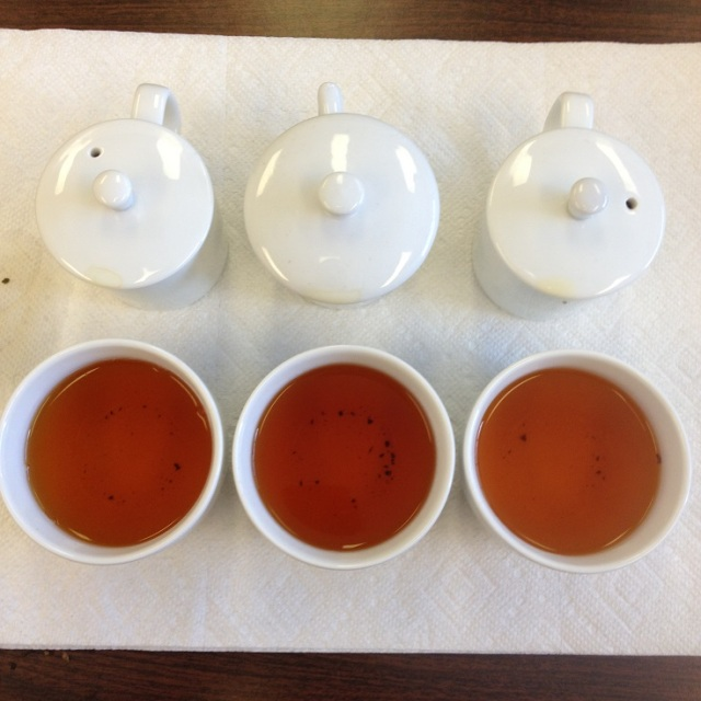 Darjeeling Autumn Flush 2013 Infusion Comparison: Dooteriah (Left), Giddapahar (Center), Margaret's Hope (right)