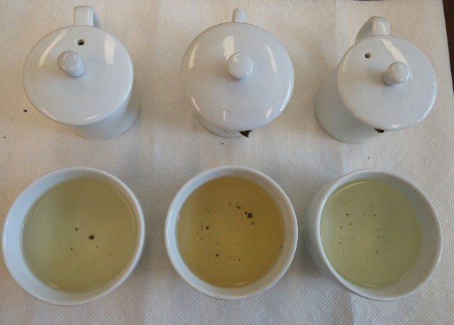 Jin Xuan Wulong Tea Comparison - 1st Infusion