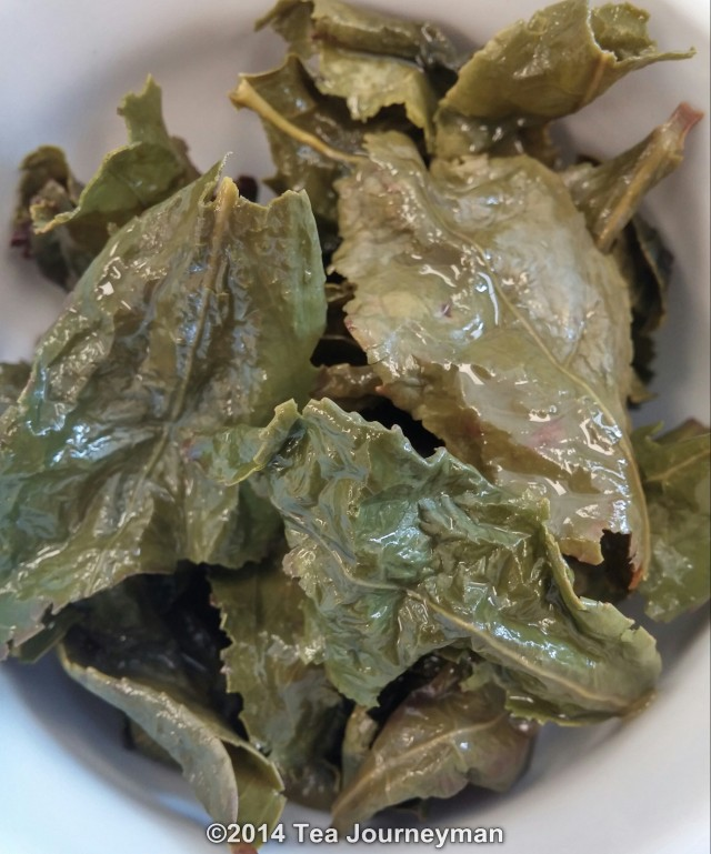 Xin Yuan Autumn 2014 TieGuanYin Oolong Tea Infused Leaves