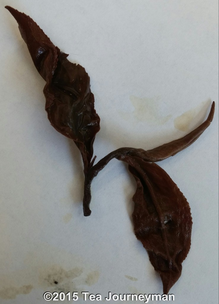 Nepal Monsoon Flush 2014 Pearl Oolong Tea Infused Leaves Closeup